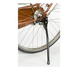 Steco Standaard  Bike Stabiel Zwart Voor Extra Zware Last