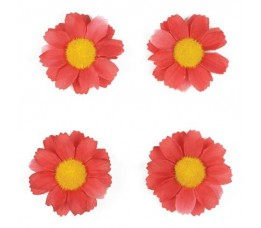 Basil Margeritenblume 4 St Fuchsia